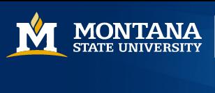 美国蒙大拿州立大学